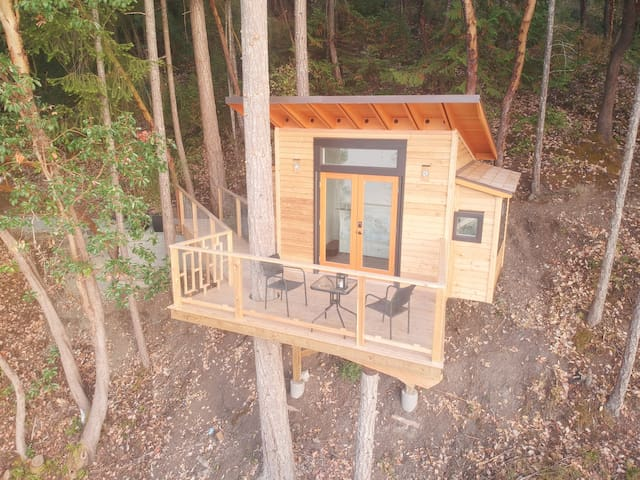 Room with a spectacular view.  Newly built zen meets West Coast treehouse.  Private, tranquil, peaceful