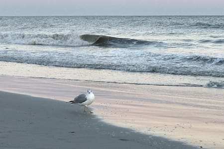 Hilton Head Seaside Vacation Rental