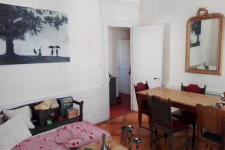 Place des Jacobins - Lyon - Appartement