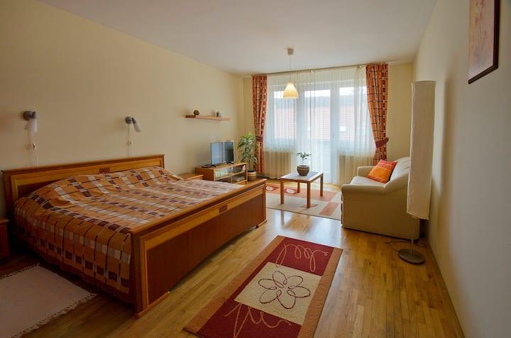 Apartman Zita Harkany