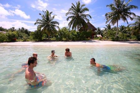 Matungou Surf Mentawai - Meals Included - Bungalow