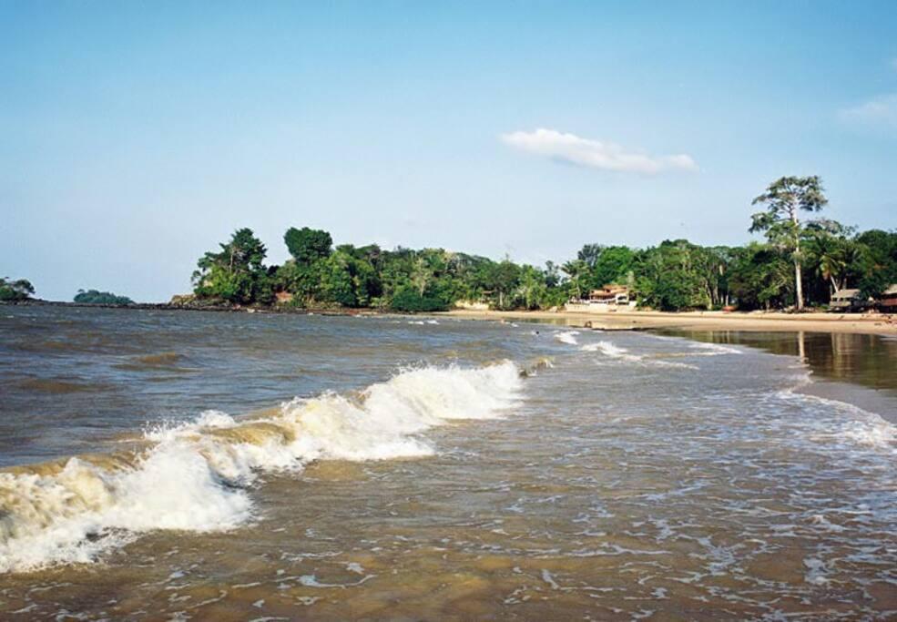 Praia de água doce, braço sul do Rio Amazonas