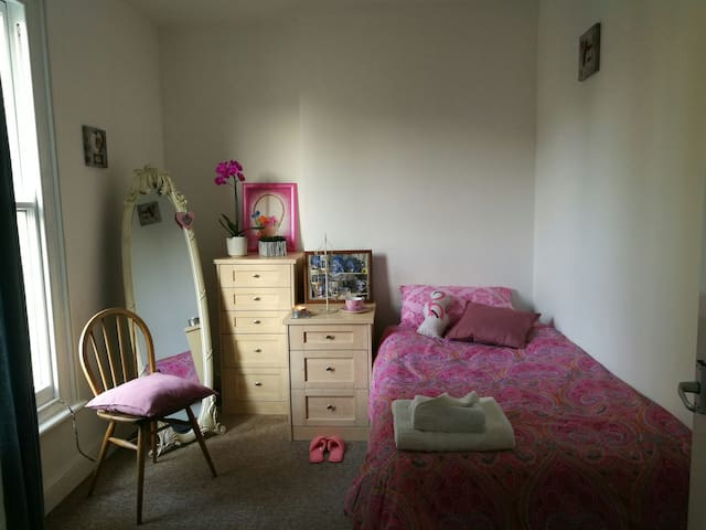 Cosy room close to city centre - Cambridge - Appartamento
