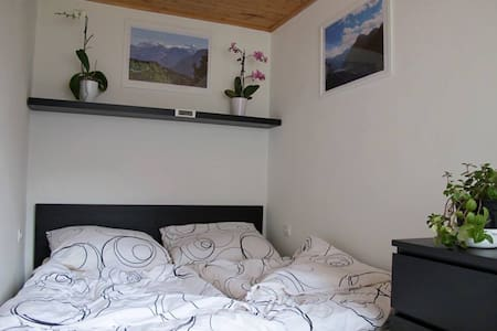 Family Apartment on Lake Hallstatt - Daire