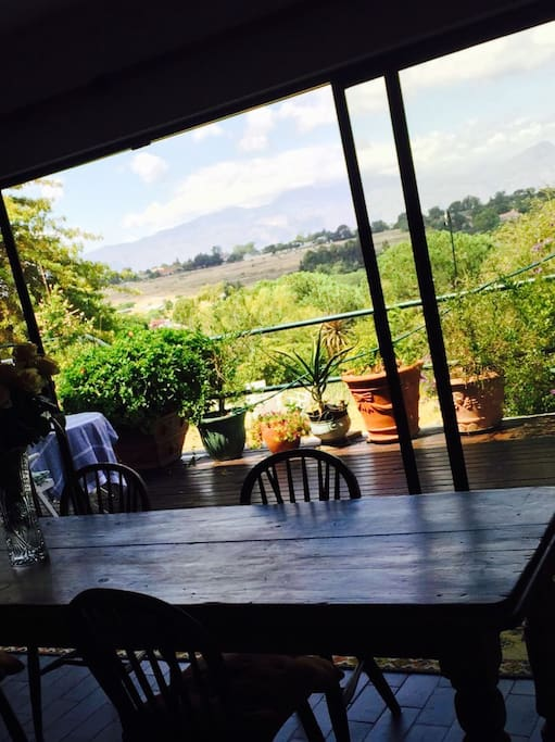 View from dining room table