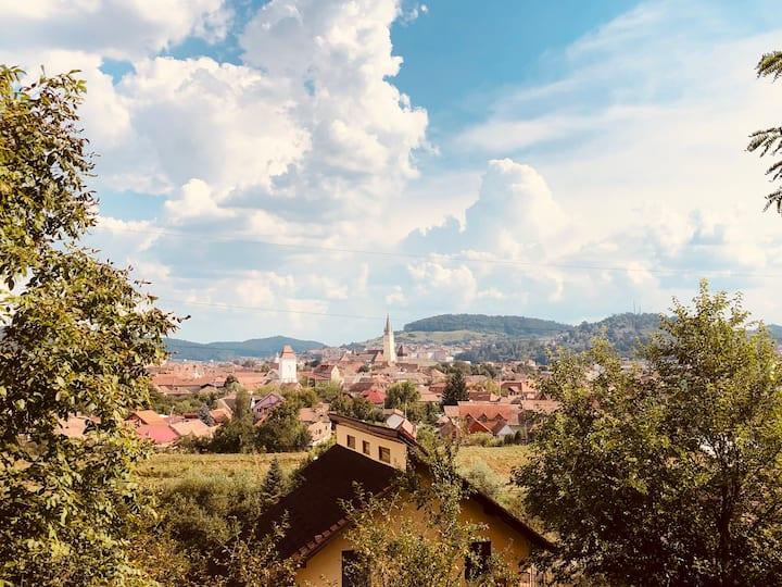 Villa Rustic Transylvania
