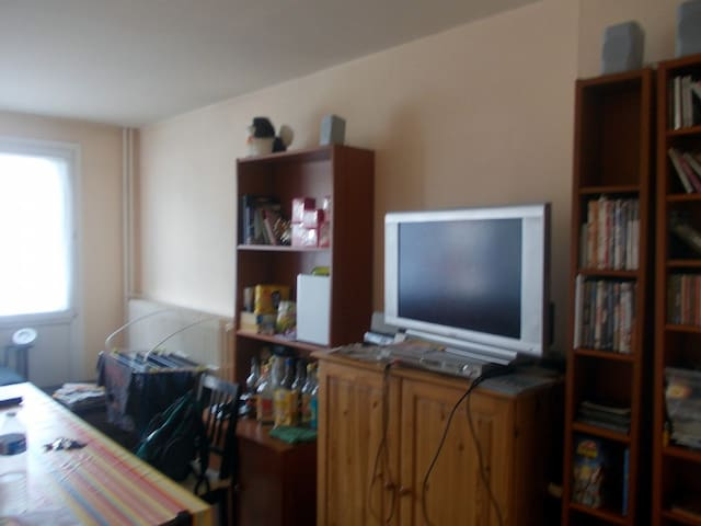 appartement 4 chambres ideal Euro 2016 Football - Lille - Apartament