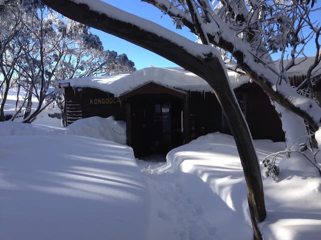Kongoola Lodge: 3pax Queen + Single & Ensuite R11 - Hotham Heights - Chatka w górach