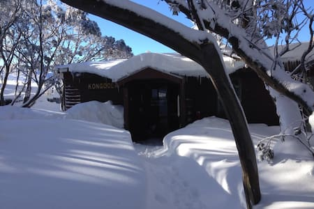 Kongoola Lodge: 3pax Queen + Single & Ensuite R11 - Hotham Heights - Chalet