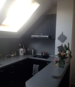 Cozy private appartment with big terrace in center - 大特尔诺沃 - 公寓
