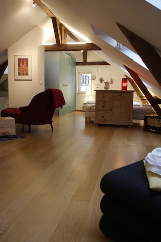 cosy Maisonette flat in the old town of Basel