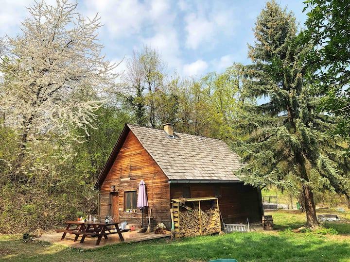 Cabin&Canvas - cosy private cabin + tent + garden