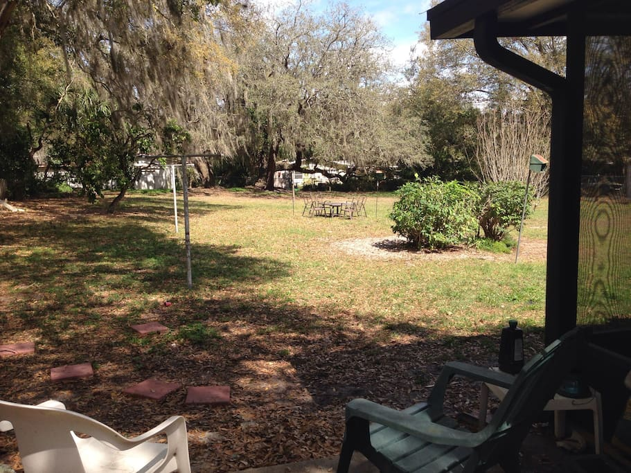 Large spacious backyard with plenty of outdoor seating.