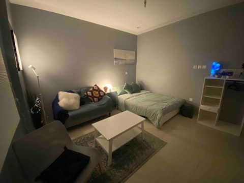 Cozy one room  apartment , with warm bed and sofa
