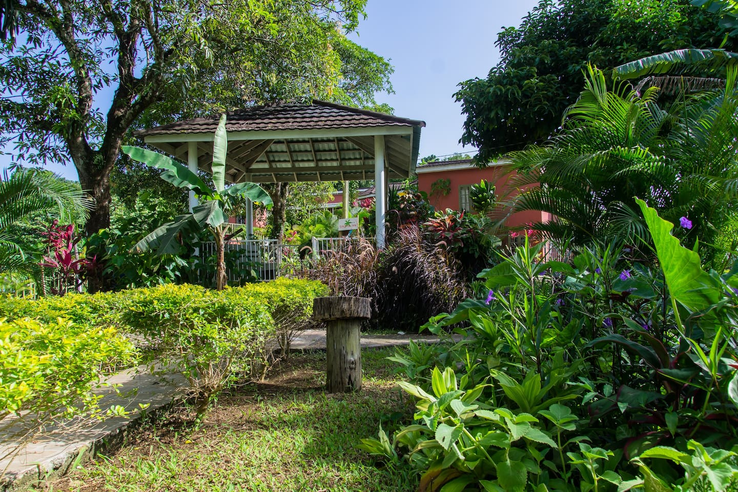 This is the Tropical garden - a communal area - and the site that greets you as you enter our version of Paradise.