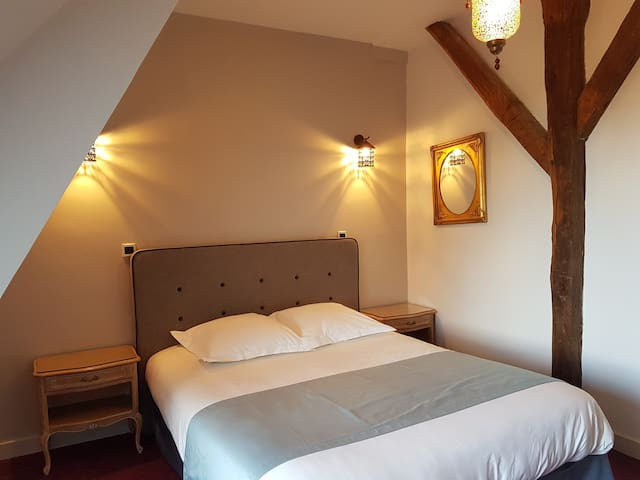 Chateau d'Ardree Buhler Bis for 4 pax Near Tours