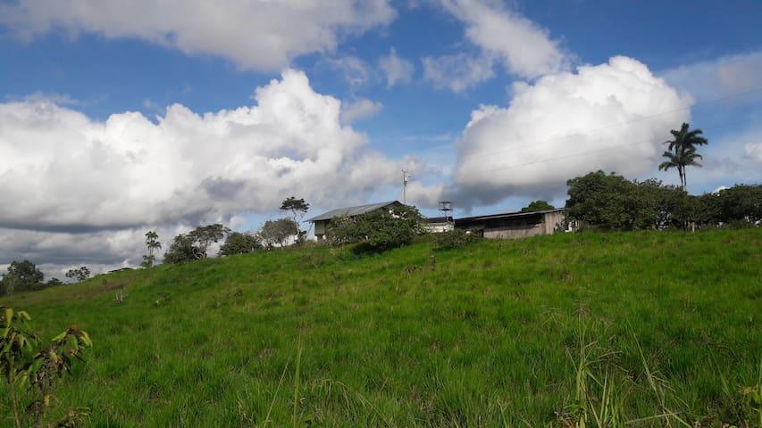 Hacienda Domono