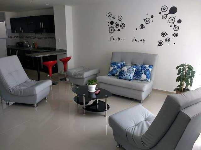 Amplio y confortable apartamento en La Francia