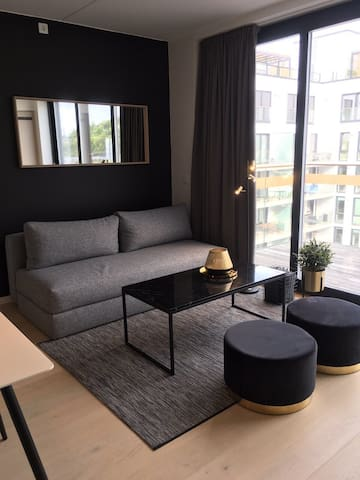 Luxury Brand new apartment at Bjørvika