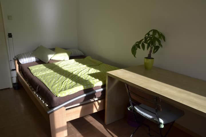 1 single room in central and cozy flat