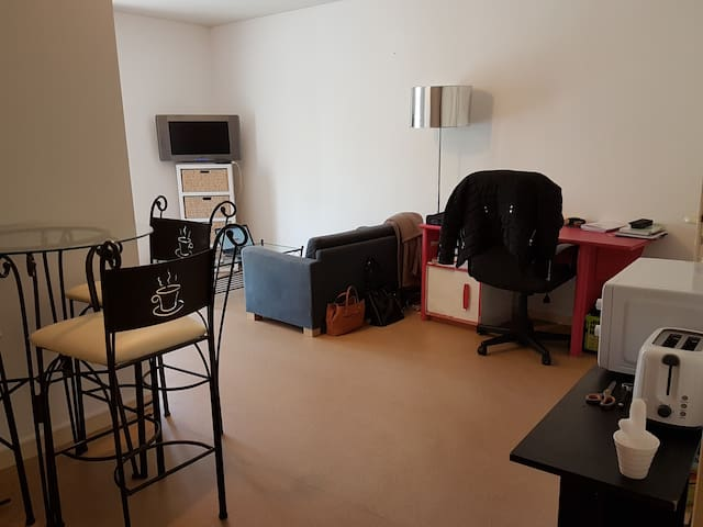 Appartement Charmant Hippodrome - Nantes - Apartment