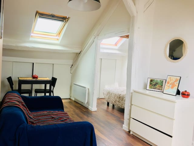 Studio lumineux avec chambre Fontainebleau