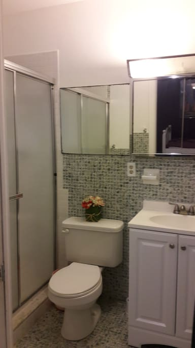 This is the bathroom, I apologize for the quality I have to update the photos. Bathroom is very clean, also has space to store your things.