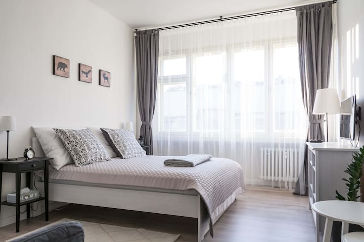 Bright and cozy apartment in the center of Prague - Prag - Wohnung