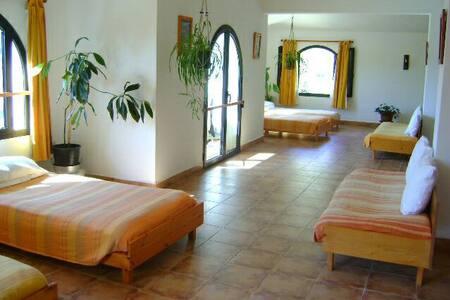 Un chez-soi dans le Ftuh Kesrouan - Ghbale - Loft