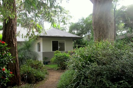 Motel-style one-bedroom unit - Pearl Beach - Cabin