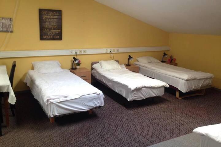 Уютная 5-ти местная комната