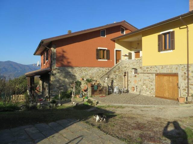 Casa & Atelier del Lupo