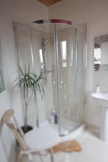 Ensuite Shower with Kingsize bedroom