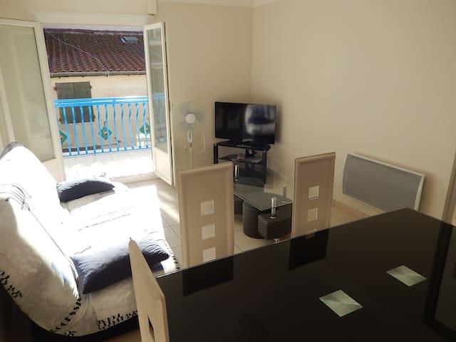Appartement Argelès sur Mer T2 +