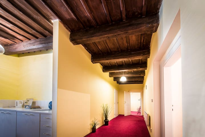Large room near  Charles Bridge