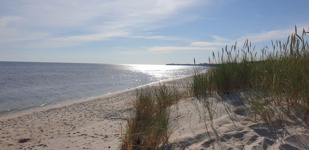 Sandhammaren, med natur och stränder som granne..