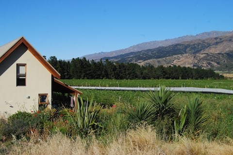 Maori Point Vineyard Cottage