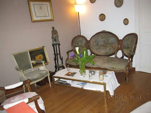 Gde Chambre Chaleureuse + salon dans la chbre. - Salies-de-Béarn