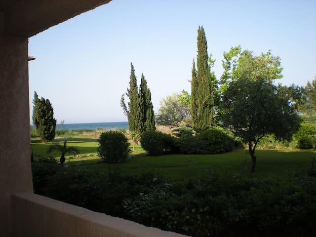 Beau studio les pieds dans l'eau : piscine, tennis - San-Nicolao - Apartamento