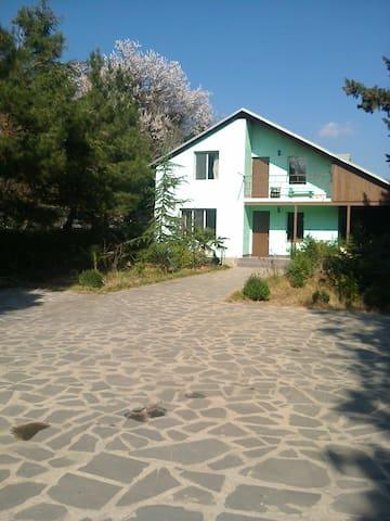 Guest house near tbilisi mall