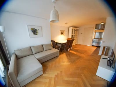 Beautiful apartment in Historical centre of Leiden - Leiden - Appartement