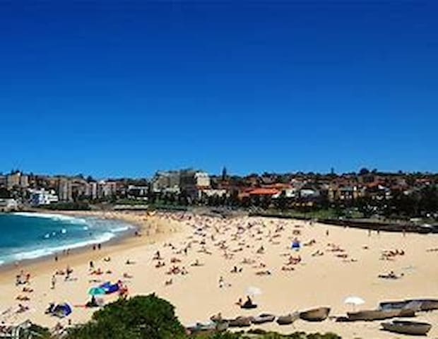 Welcome to my Coogee Beach