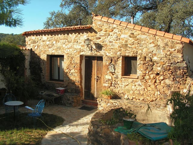 Finca El Capirote 3 - Cortegana - Holiday home
