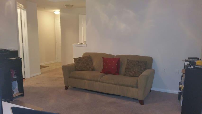 spacious apartment - Houston - Appartement