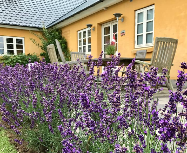 Svejgaard B&B ferie ved Vesterhavet