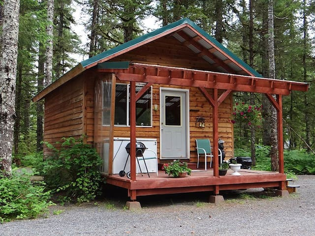 Black Bear Cabin on the Eyak River