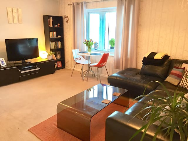 Cosy apartment with great views - Cardiff - Huoneisto
