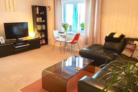 Cosy apartment with great views - Cardiff - Lakás