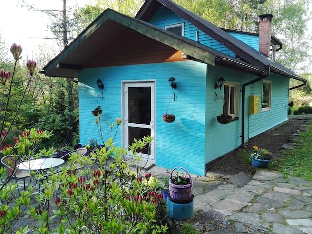 Na Górce Bieszczady -Samotny Dom pod Lasem, Cudnie