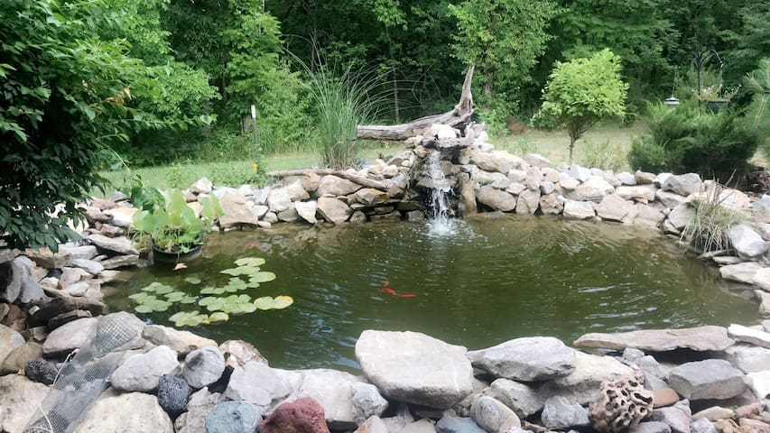 Hand built coy pond out front with waterfall. Great place to have deep or shallow conversations, or just curl up with a book!